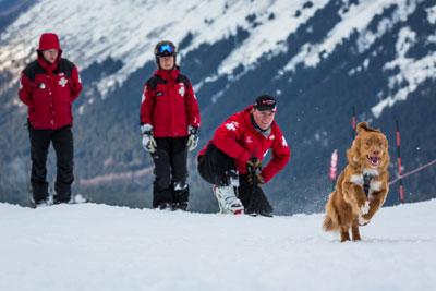 Ski rescue team