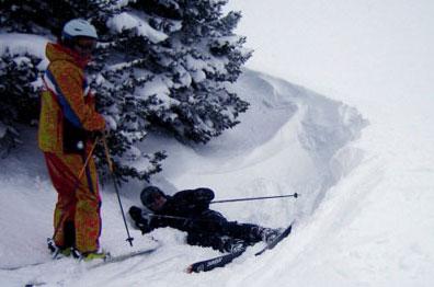 sis skier