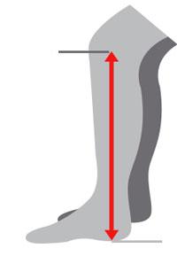 leg length