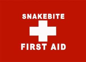 snake bite aid