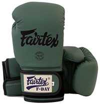 Fairtex Muay Thai Boxing Gloves Limited Edition BGV11 F