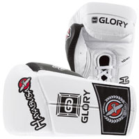 Hayabusa Glory Kickboxing Gloves
