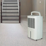 Dehumidifier in basement