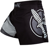 Hayabusa Fighter Kickboxing Shorts