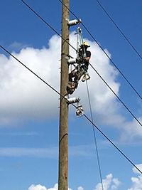 electrical power lineman cimbing a pole